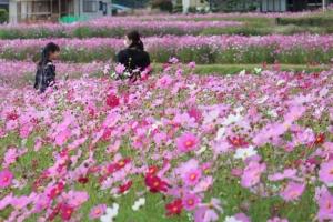 Photo_20201024171001